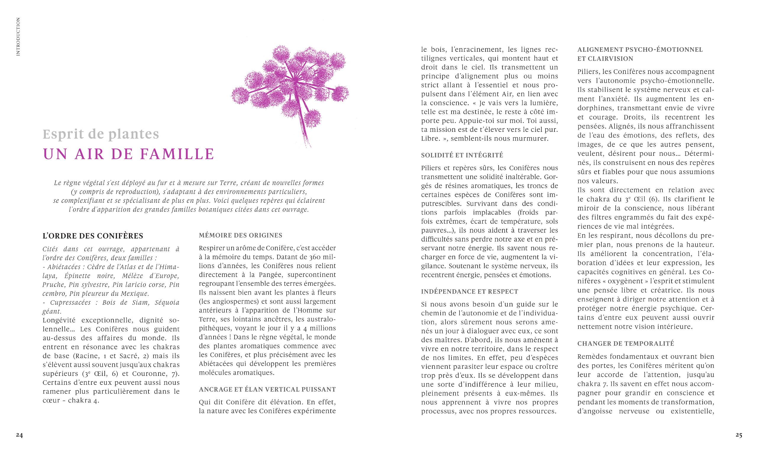Esprit-de-plantes-un-air-de-famille-le-grand-livre-des-huiles-essentielles