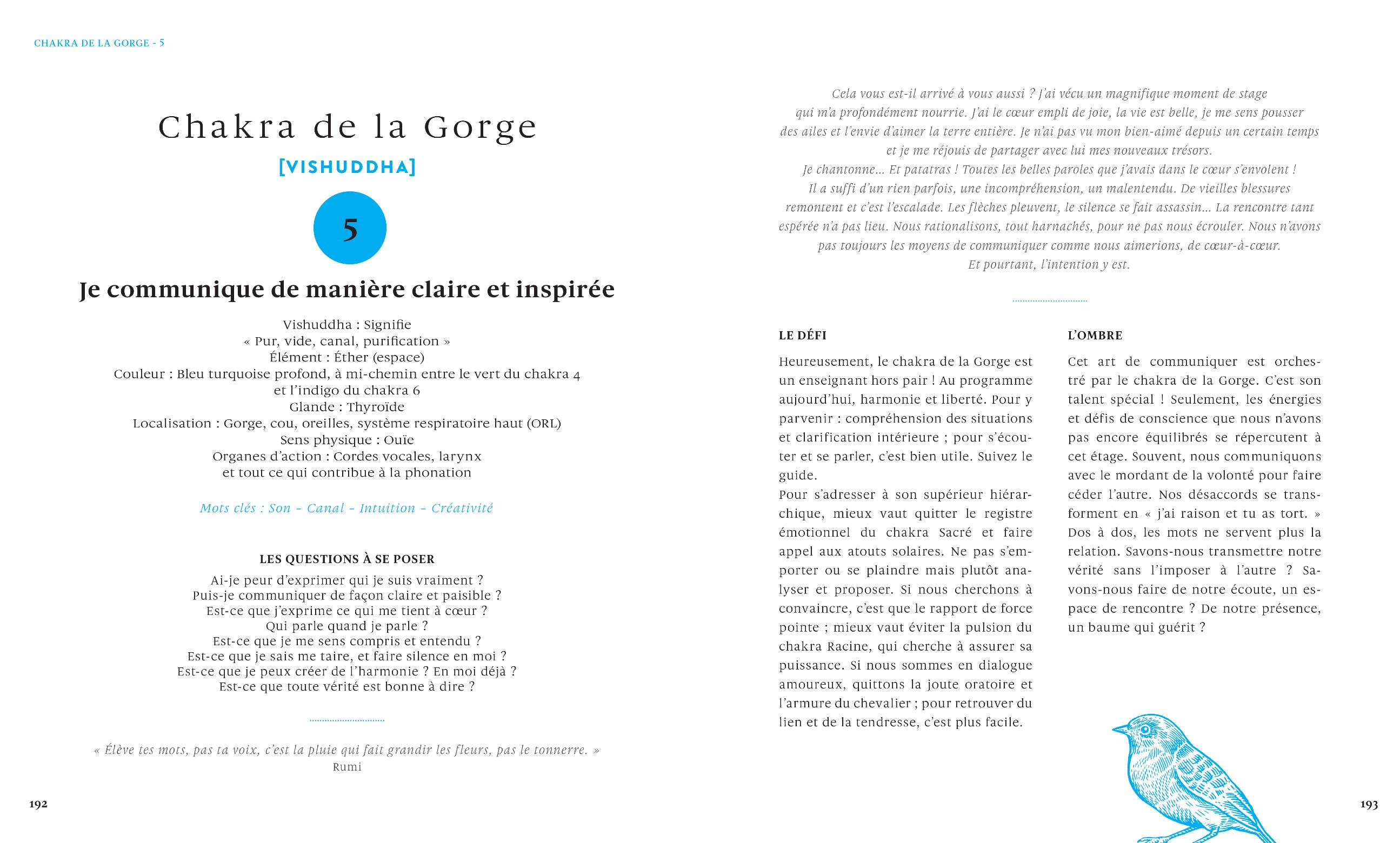 Chakra-gorge-5-Le-grand-livre-des-huiles-essentielles