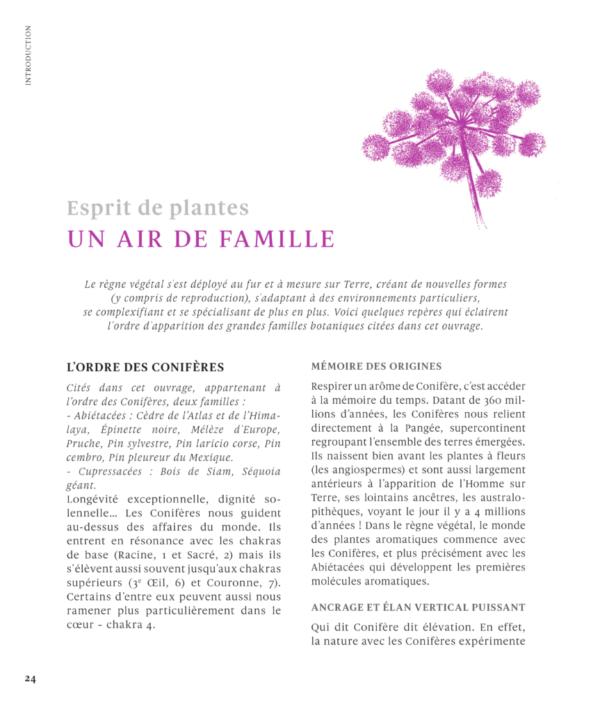 ESPRIT-DE-PLANTE1-Le-grand-livre-des-huiles-essentielles