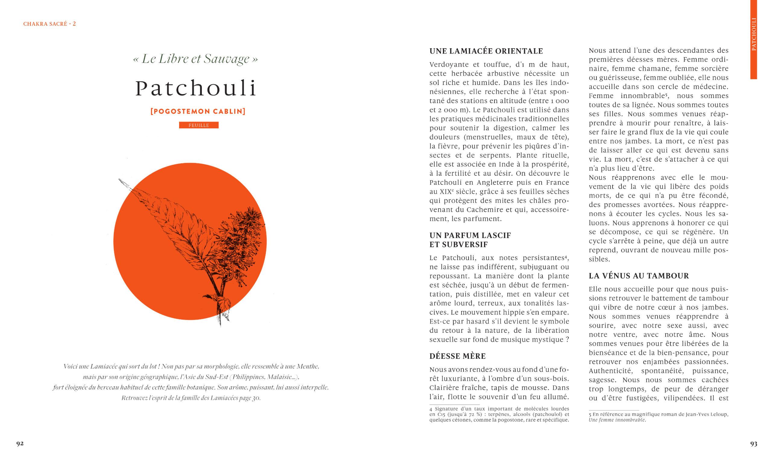Patchouli-Le-grand-livre-des-huiles-essentielles