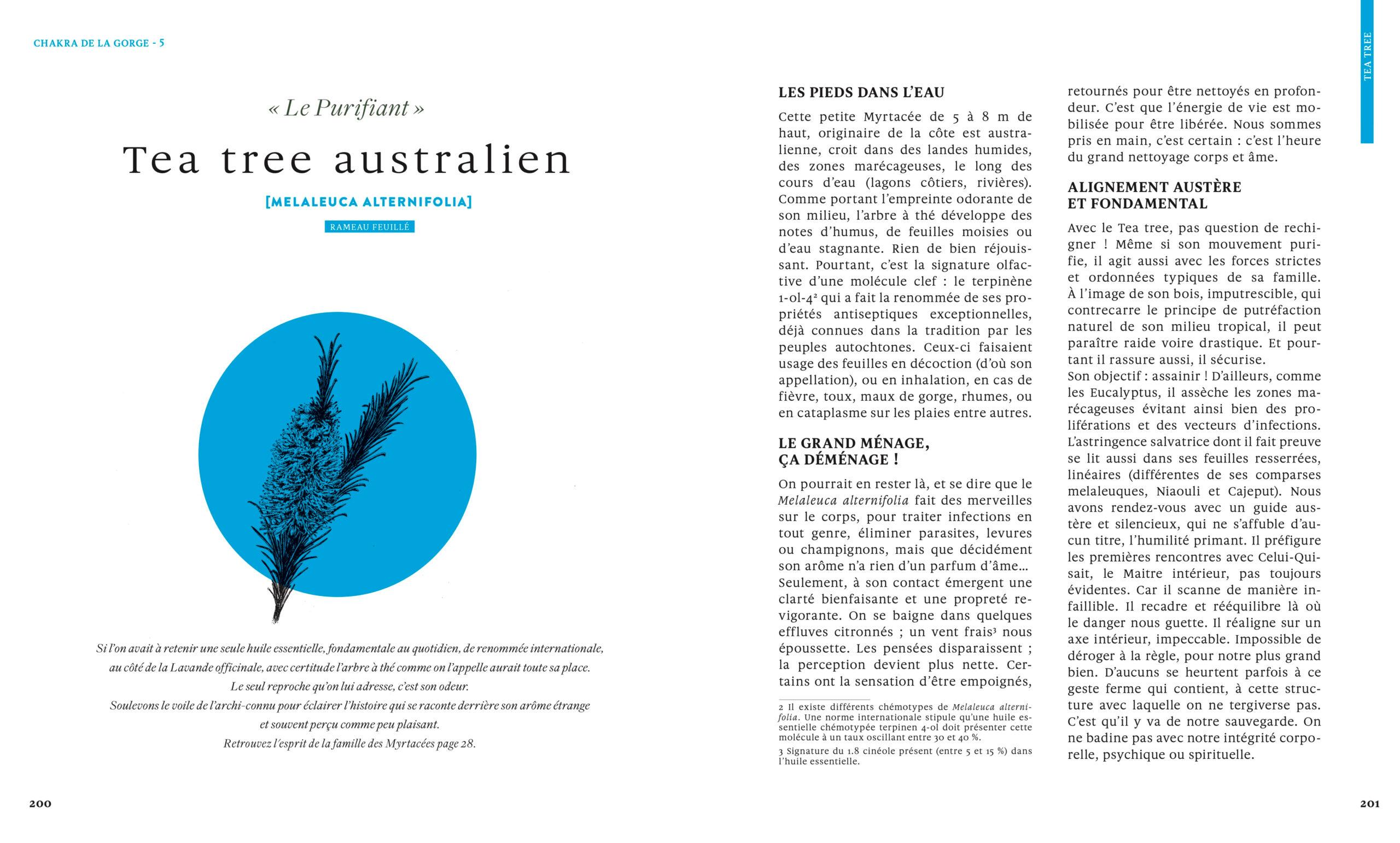 Tea-tree-australien-Le-grand-livre-des-huiles-essentielles